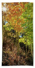 Hand Towel featuring the photograph Crisp by David Chandler