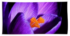 Hand Towel featuring the photograph Crocus by Tammy Schneider