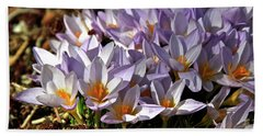 Crocuses Serenade Hand Towel by Ed  Riche