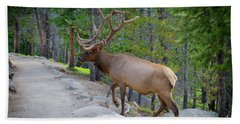 Crossing Paths With An Elk Hand Towel