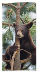 Cub In Tree Dry Brushed Hand Towel