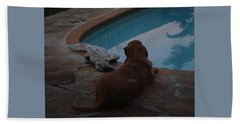 Cujo And The Alligator Hand Towel by Val Oconnor