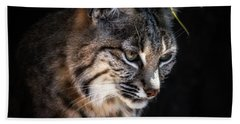 Curious Bobcat Hand Towel by Elaine Malott