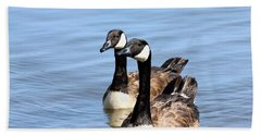 Hand Towel featuring the photograph Curious Canda Geese by Sheila Brown
