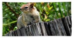 Curious Chipmunk Hand Towel
