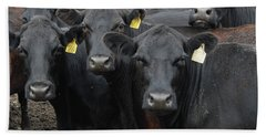 Curious Cows Hand Towel