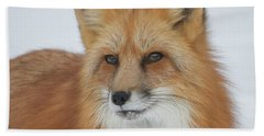 Curious Fox Bath Towel
