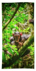 Hand Towel featuring the photograph Curious by Rick Furmanek