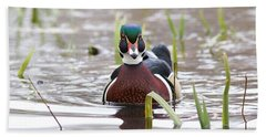 Hand Towel featuring the photograph Curious Wood Duck by Lynn Hopwood