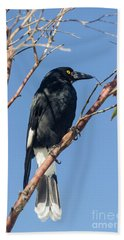 Currawong Hand Towel