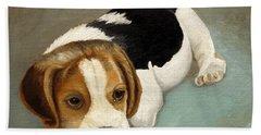 Cute Beagle Hand Towel
