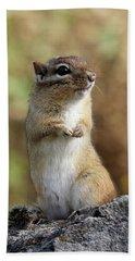 Cute Chipmunk Hand Towel