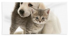 Cute Kitten And Perfect Puppy Hand Towel