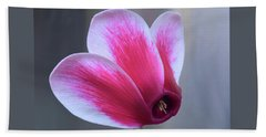 Hand Towel featuring the photograph Cyclamen Portrait. by Terence Davis