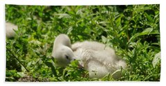 Cygnet Getting Ready To Nap Hand Towel