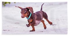 Dachshund On Beach Hand Towel by Stephanie Hayes