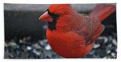 Daddy Cardinal  Hand Towel by Skip Willits