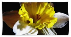 Bath Towel featuring the photograph Daffodil 2 by Rose Santuci-Sofranko