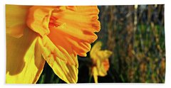 Bath Towel featuring the photograph Daffodil Evening by Robert Knight