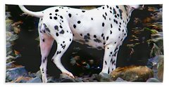 Bath Towel featuring the photograph Dalmatian On The Rocks by Wendy McKennon