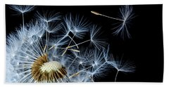 Hand Towel featuring the photograph Dandelion On Black Background by Bess Hamiti