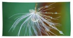 Dandelion Water Drop Macro 2 Hand Towel