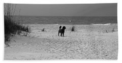 Dandy On The Beach Hand Towel
