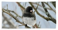 Dark Eyed Junco In The Winter Bath Towel