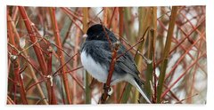 Dark Eyed Junco Hand Towel