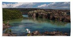 Darwin Bay     Genovesa Island      Galapagos Islands Hand Towel