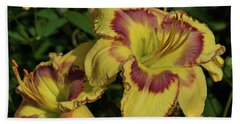 Bath Towel featuring the photograph Daylilies And Zinnia by Sandy Keeton