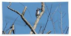 Dead Tree - Wildlife Hand Towel by Donald C Morgan