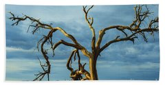 Hand Towel featuring the photograph Dead Tree In Death Valley 7 by Micah May