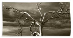 Hand Towel featuring the photograph Dead Tree In Death Valley 8 by Micah May