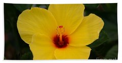 Decorative Floral Photo A9416 Hand Towel
