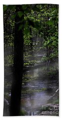Deep In The Swamp Hand Towel by Skip Willits