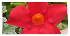 Mandevilla Deep Red Flower Bath Towel