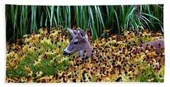 Bath Towel featuring the photograph Deer And Daisies In Color by Peggy Collins