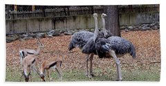 Deer And Ostriches Bath Towel
