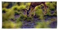 Deer At Crater Lake, Oregon Hand Towel