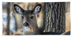 Bath Towel featuring the photograph Deer At The Salad Bar by Paul Freidlund