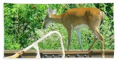Deer Crossing Bath Towel by J R Seymour