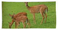Hand Towel featuring the photograph Deer Family by Rick Friedle