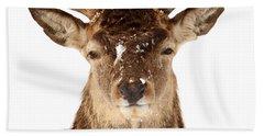 Deer In Headlights Bath Towel