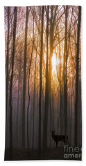 Deer In The Forest At Sunrise Bath Towel