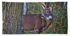 Deer In The Woods Hand Towel