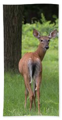 Deer Looking Back Bath Towel