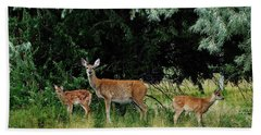 Deer Mom Bath Towel by Larry Campbell