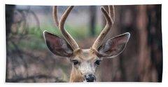 Deer Stare Hand Towel
