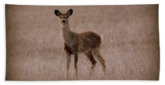 Deerfield Bath Towel